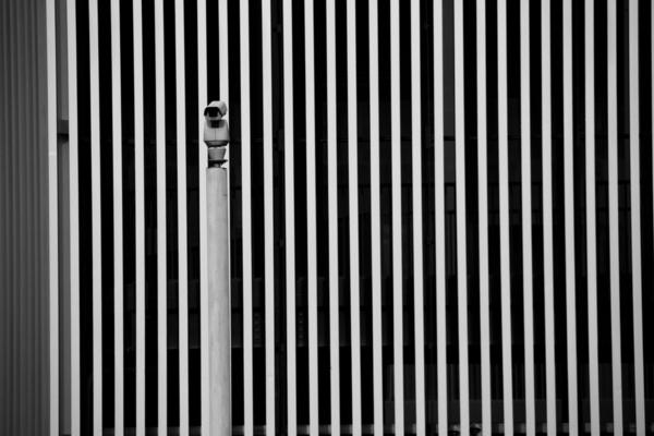 Surveillance, David Chang