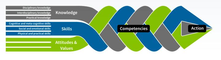 Zopfdarstellung der Kompetenz gemäß OECD